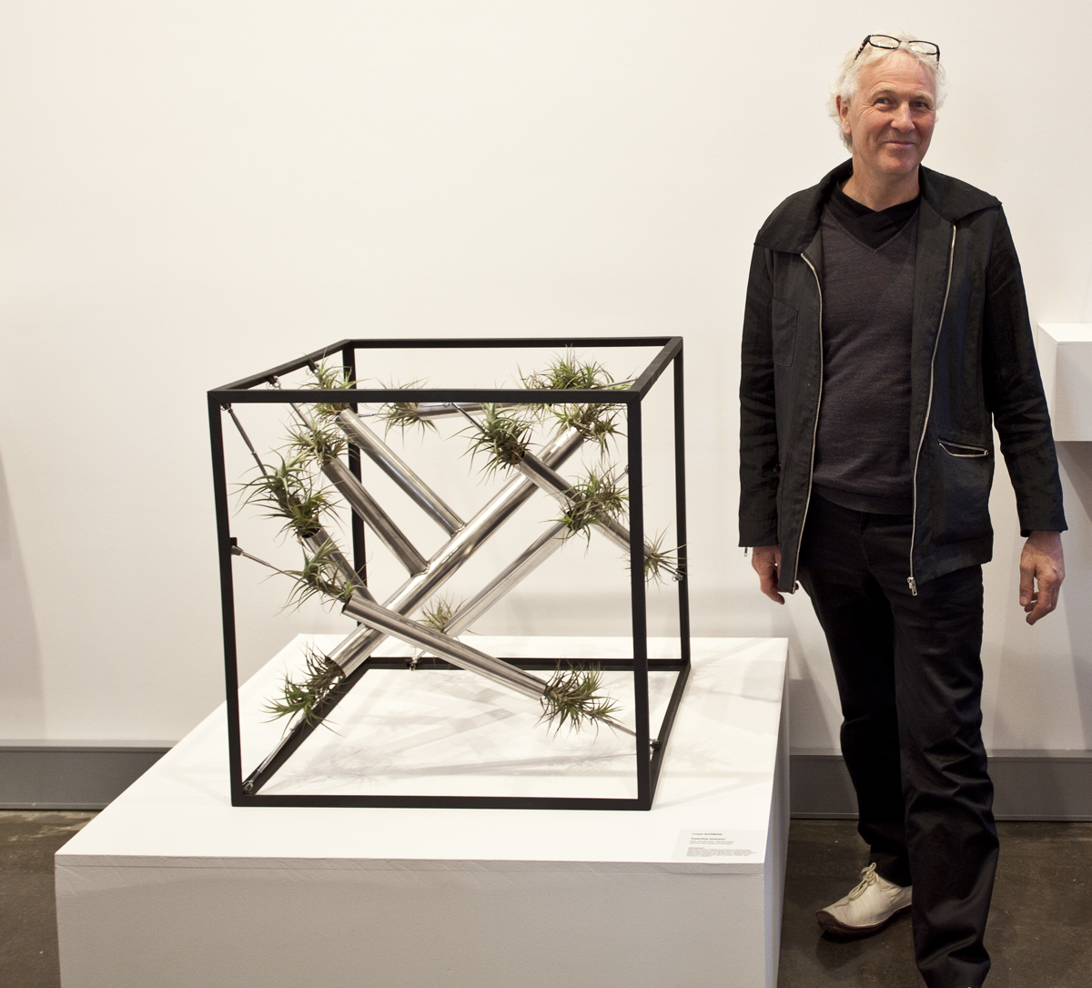 Lloyd Godman with Expanding dimension - a super sustainable plant sculpture