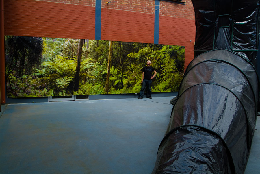 Godman's Carbon Obscura IV - has been installed at the La Trobe regional Gallery